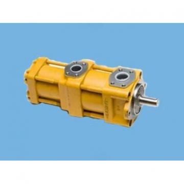 CQT63-80FV-S1376-A Pump Hot shitje